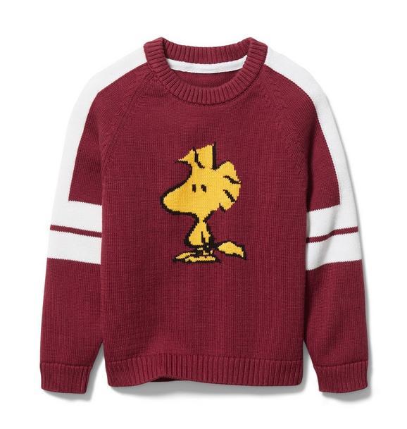 PEANUTS™ Woodstuck Sweater