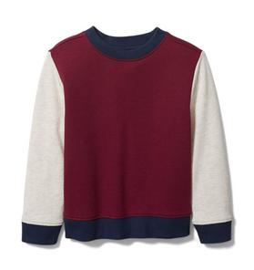 Colorblocked Crewneck Sweatshirt