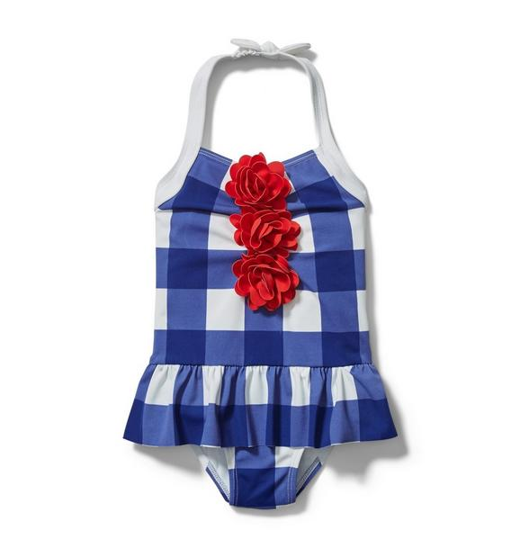 Embroidered Floral Gingham Swimsuit