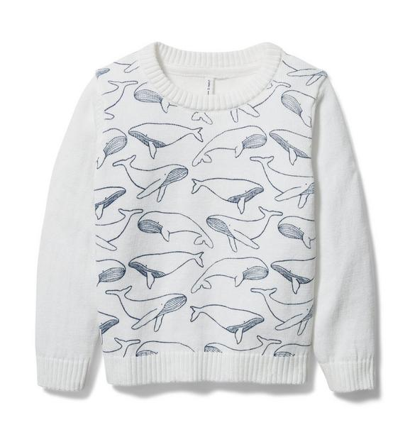 Janie and Jack Whale Sweater