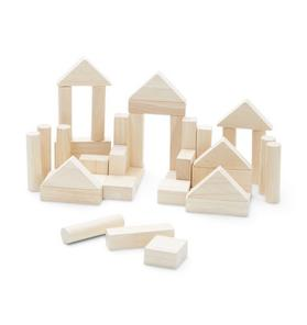 PlanToys 40 Unit Block Set