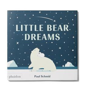 Little Bear Dreams Book
