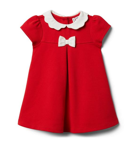 Baby Scallop Collar Ponte Dress