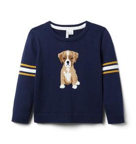 Dog Varsity Sweater