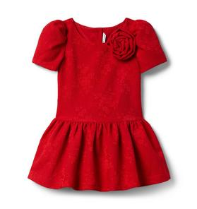 Rose Jacquard Dropwaist Dress