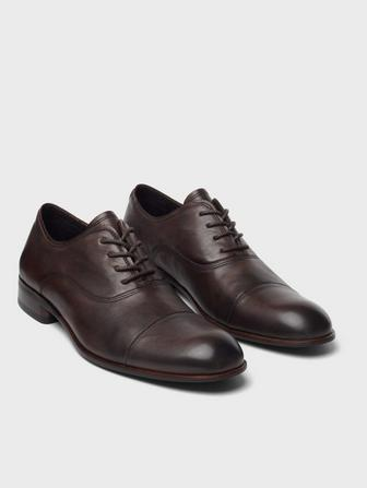 SEAGHER OXFORD
