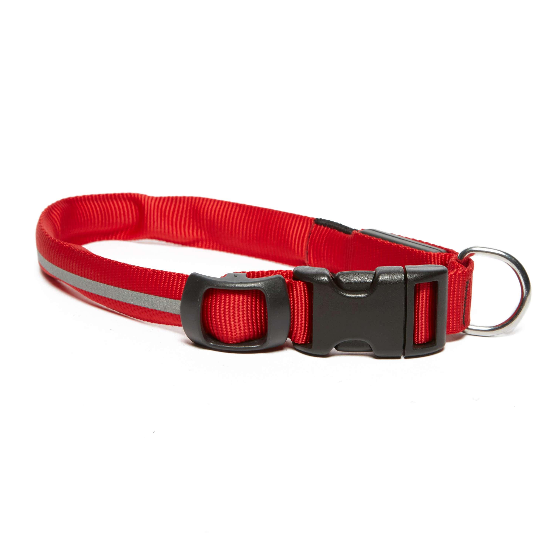 NITEIZE Dog collar - Medium