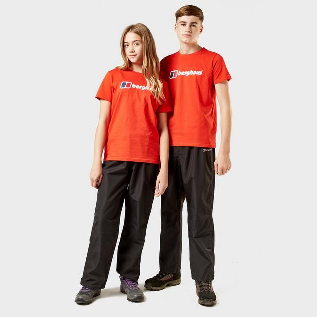 db13d14a BERGHAUS Kids' Logo T-Shirt image 3
