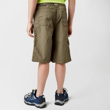 Grey Grey Regatta Boy's Sorcer Shorts