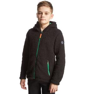 REGATTA Boys' High Roller Hooded Fleece