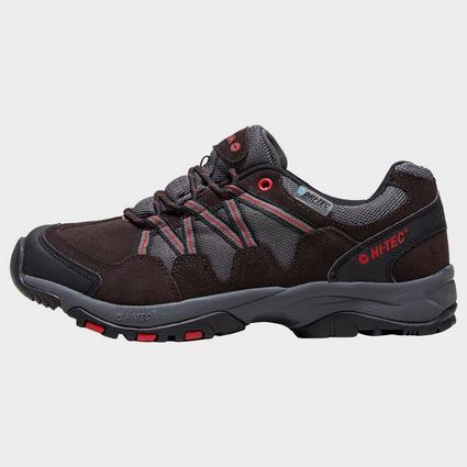 Men's Dexter Walking Shoe