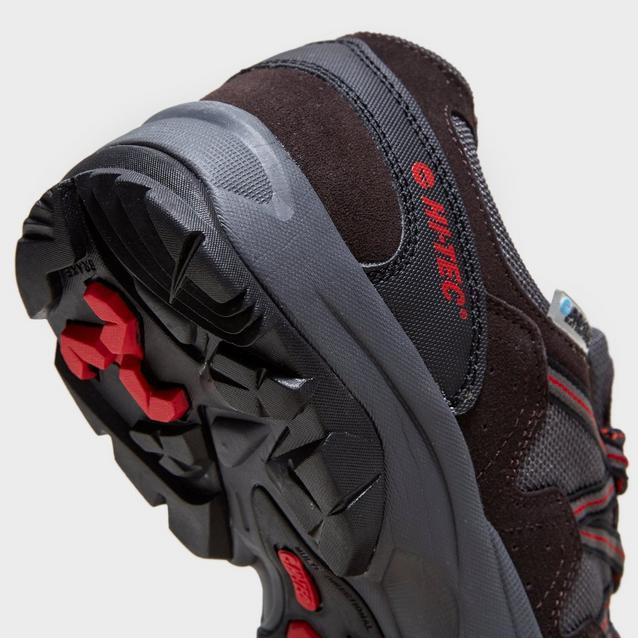 Hi-Tec Mens Dexter Low Waterproof Multisport Shoe
