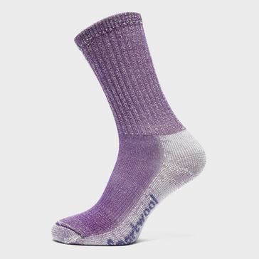 Purple Smartwool Women's Hike Light Crew Socks