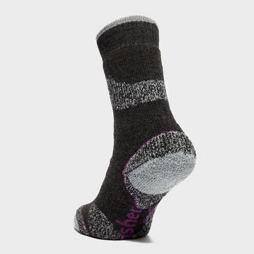 Black Brasher Women's Trekker Plus Socks