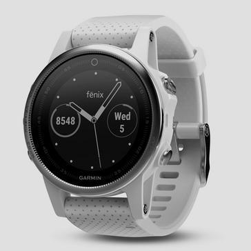 Silver Garmin fēnix® 5S Multisport GPS Watch