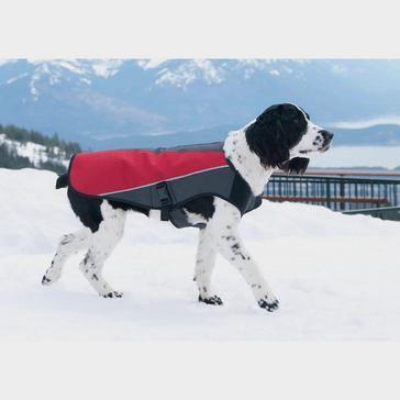 Black Ezy-Dog Element Dog Jacket (XS)