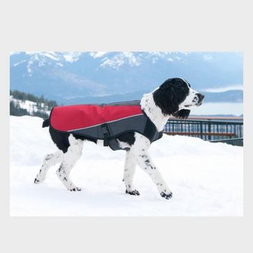 Ezy-Dog Element Dog Jacket (XL)