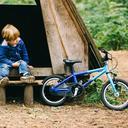 Blue Wild Bikes Wild 14 Kids' Bike image 8