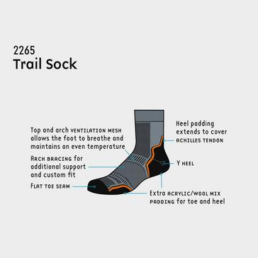 Grey 1000 MILE Men's Trail Sock (Twin Pack)