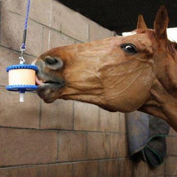 Blue Likit Horse Lick