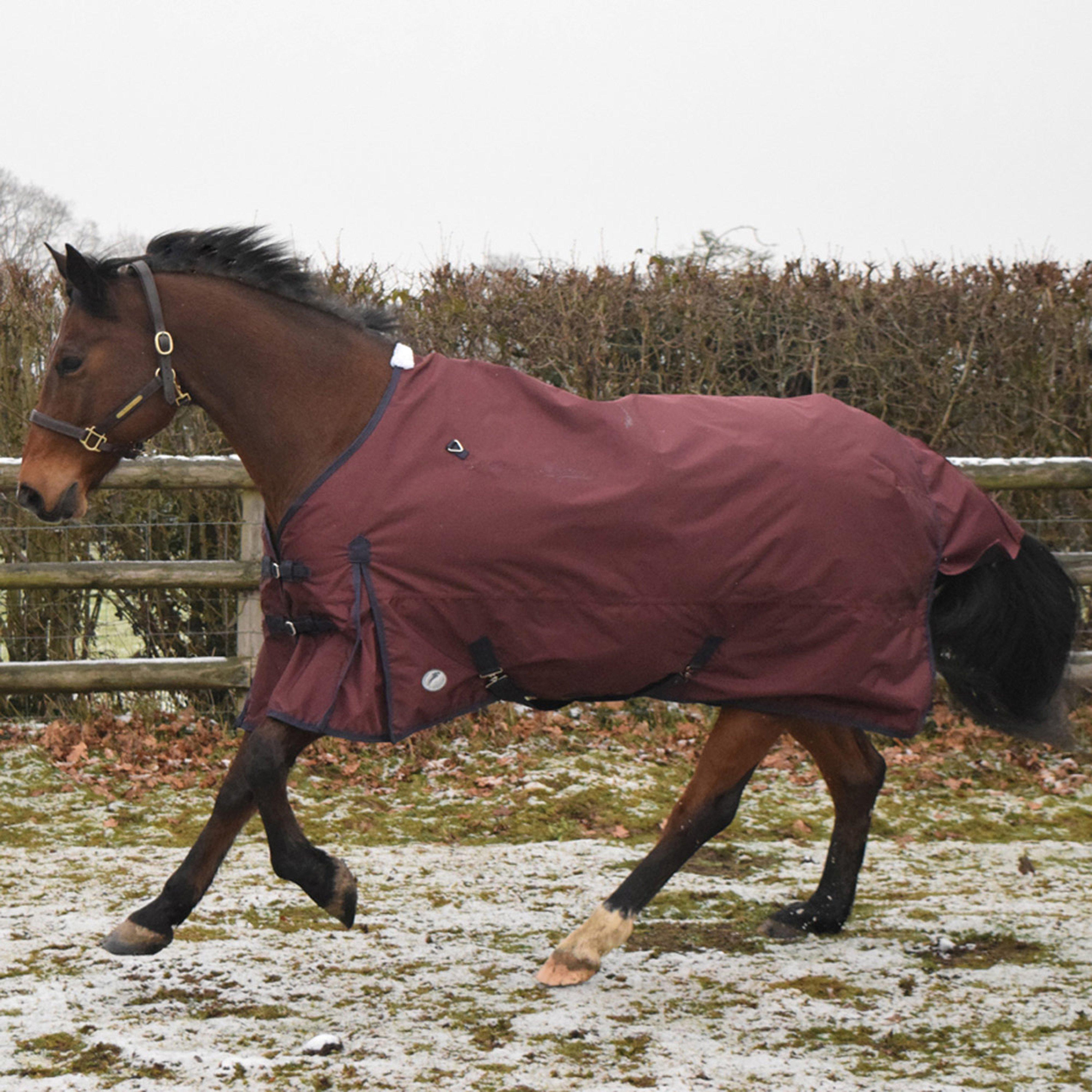 Image of Trilanco Jhl Essential Turnout Rug - Red, Red