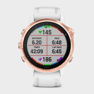 Garmin Fēnix® 6S Pro Multi-Sport GPS Watch