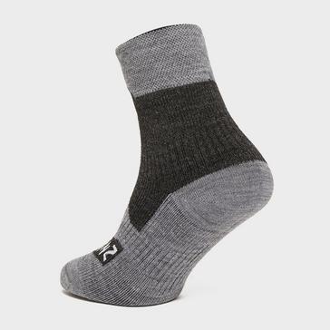 Sealskinz Waterproof All Weather Ankle Sock