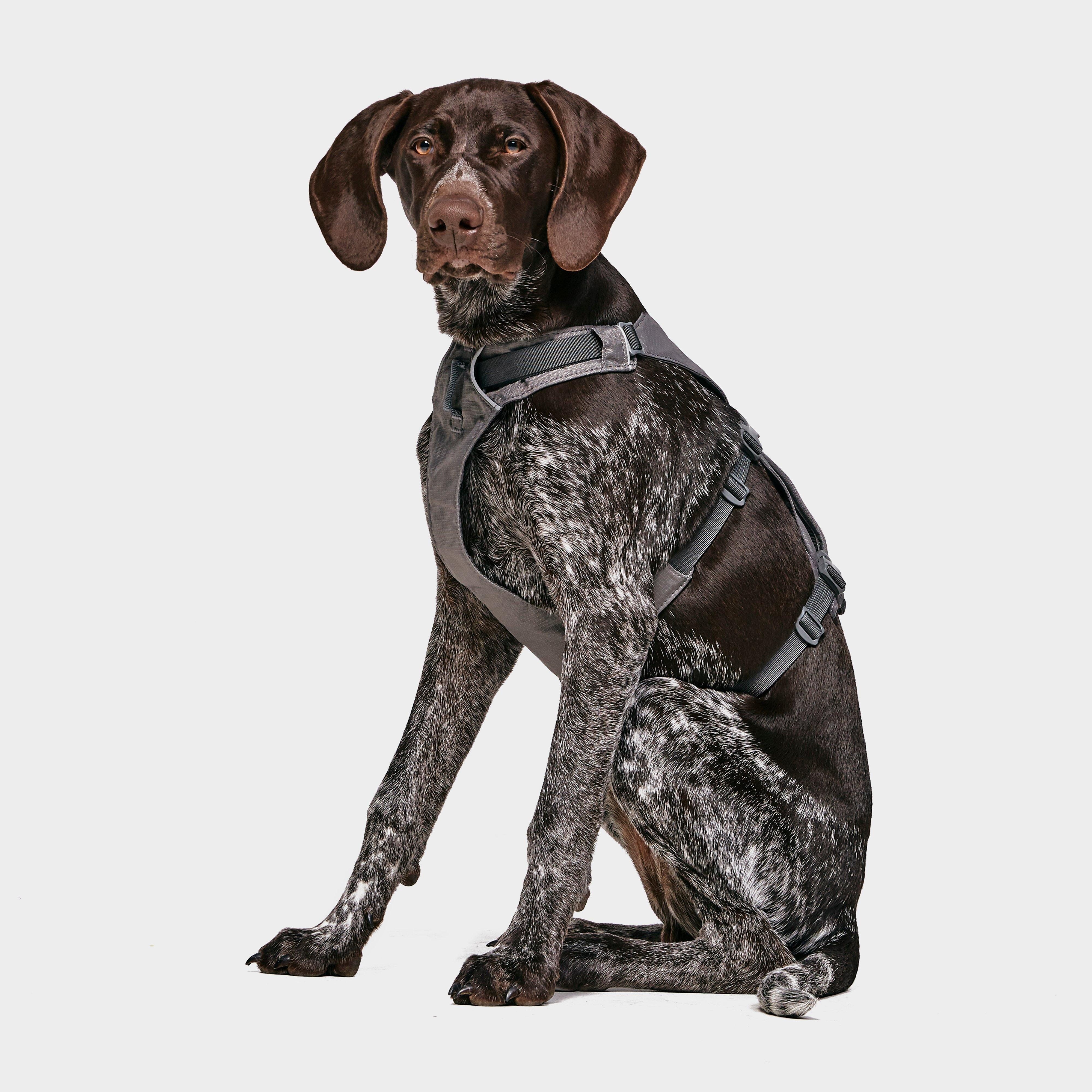 Image of Ruffwear Flagline Dog Harness - Grey/Dgy, Grey/DGY