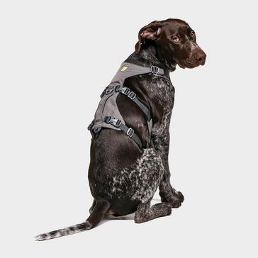 Ruffwear Flagline Dog Harness