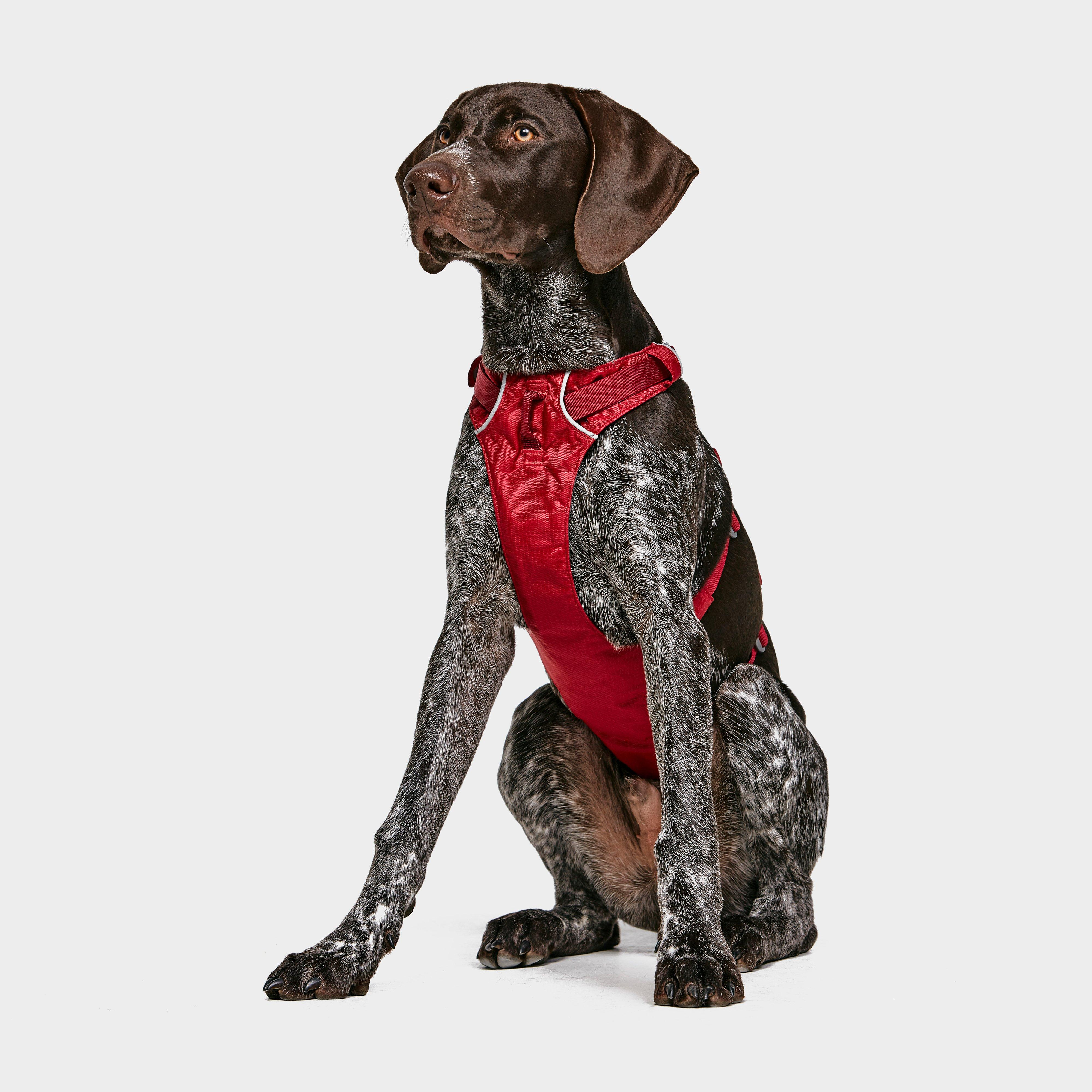 Image of Ruffwear Flagline Dog Harness - Red/Red, Red/RED