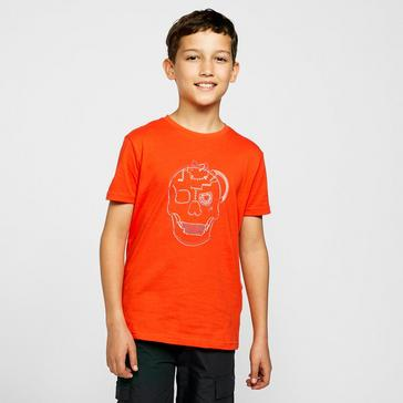 Orange Dare 2B Kids Go Beyond T-Shirt