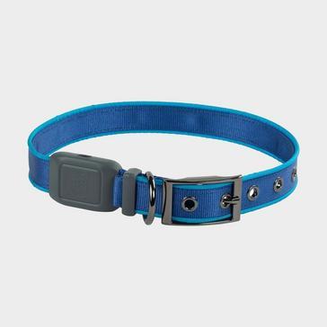 BLUE Niteize Nitedog Rechargeable Collar Large