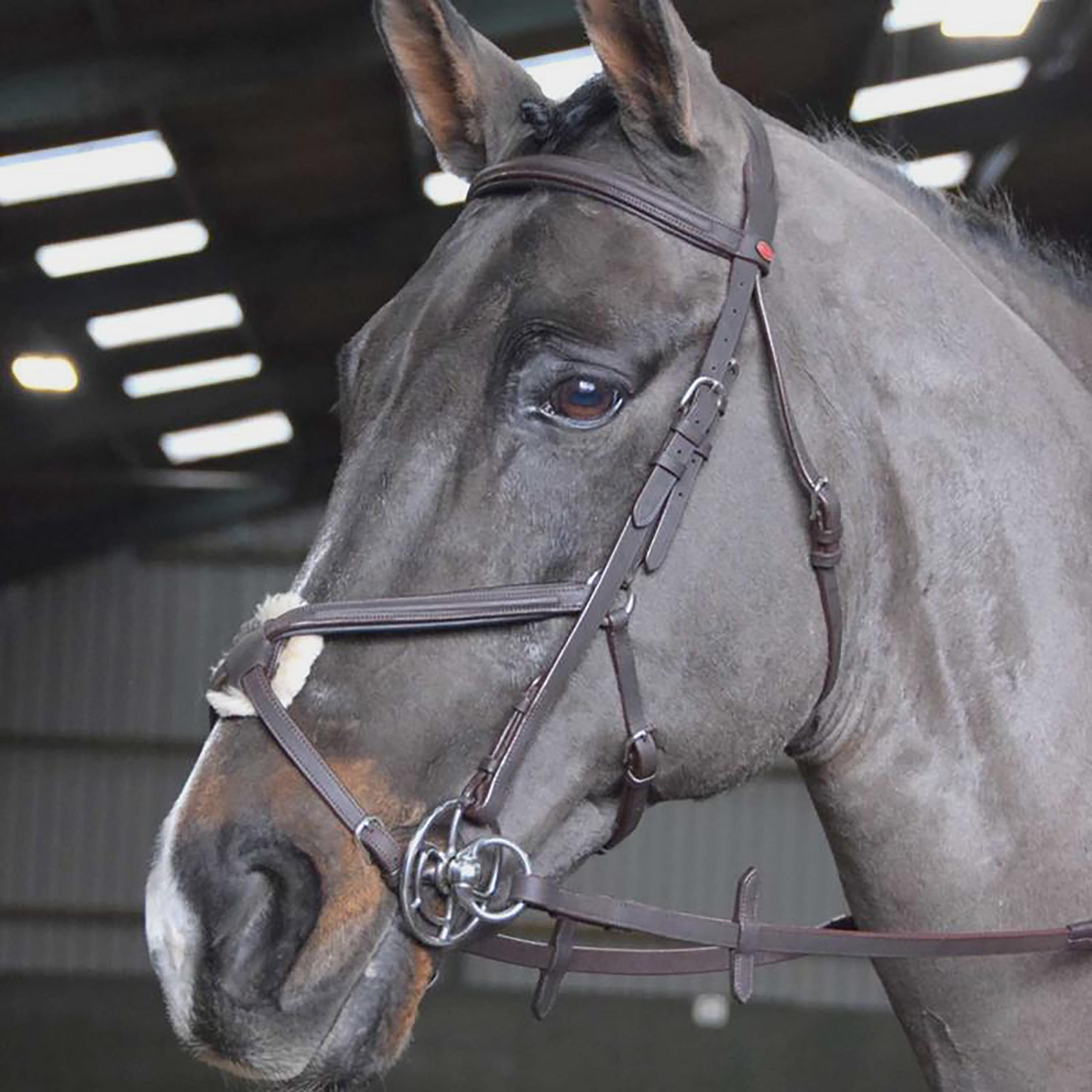 Image of Whitaker Ready-To-Ride Mexican Bridle - Black/Black, BLACK/BLACK