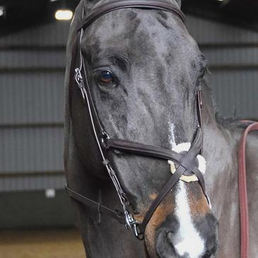 Whitaker Ready-To-Ride Mexican Bridle