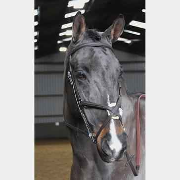 Black Whitaker Ready-To-Ride Mexican Bridle