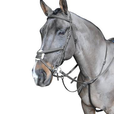 Whitaker Ready-To-Ride Martingale