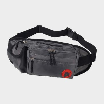 Grey PETFACE Dog Walk Bum Bag