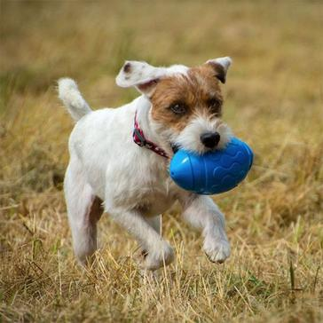 Blue PETFACE Toyz Rugby Ball