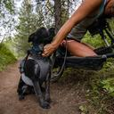 Grey Ruffwear Roamer Bungee Dog Leash image 4