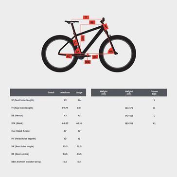 "Beige POLYGON Syncline C5 29"" Mountain Bike"