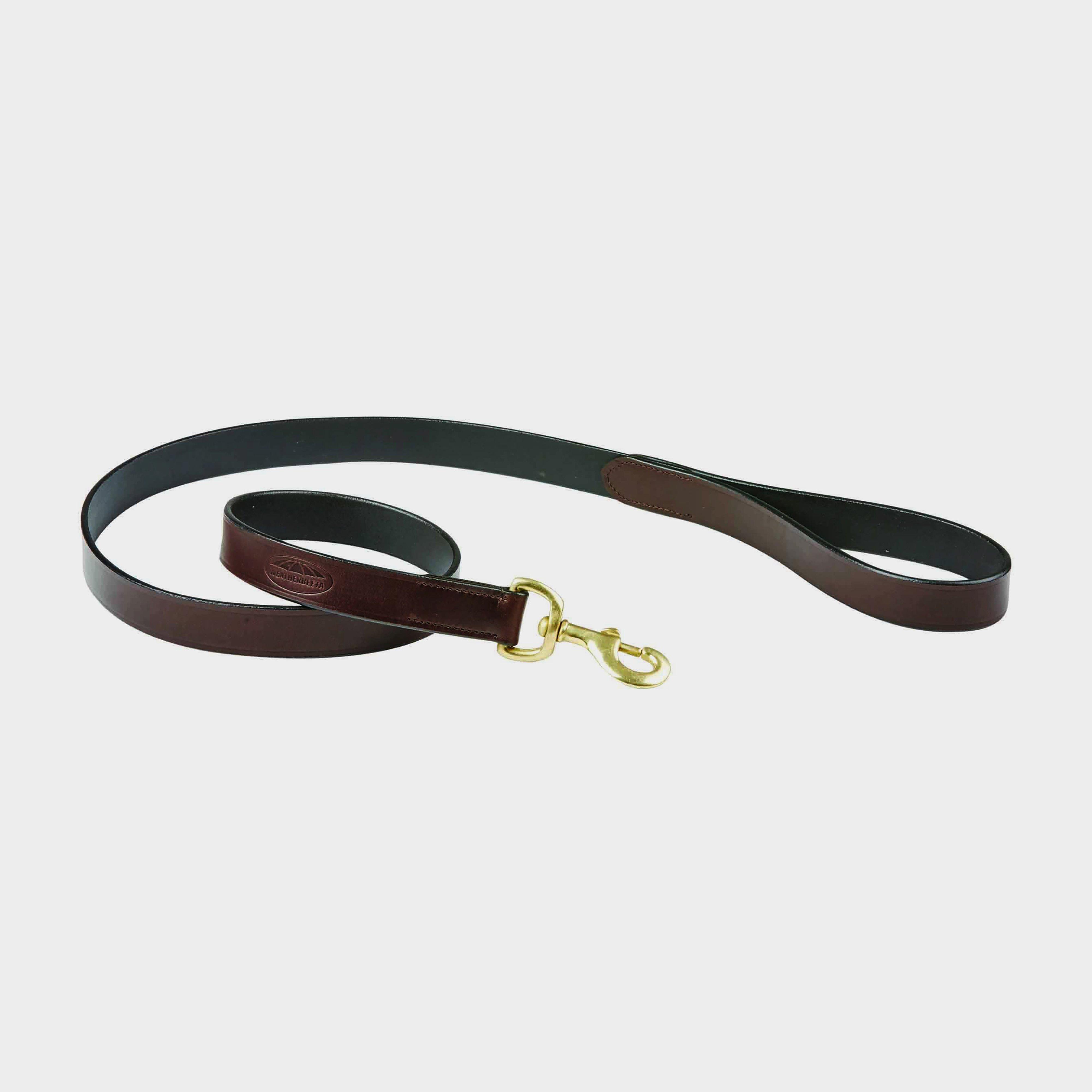 Image of Weatherbeeta Leather Dog Lead - Brown/Brown, Brown/Brown