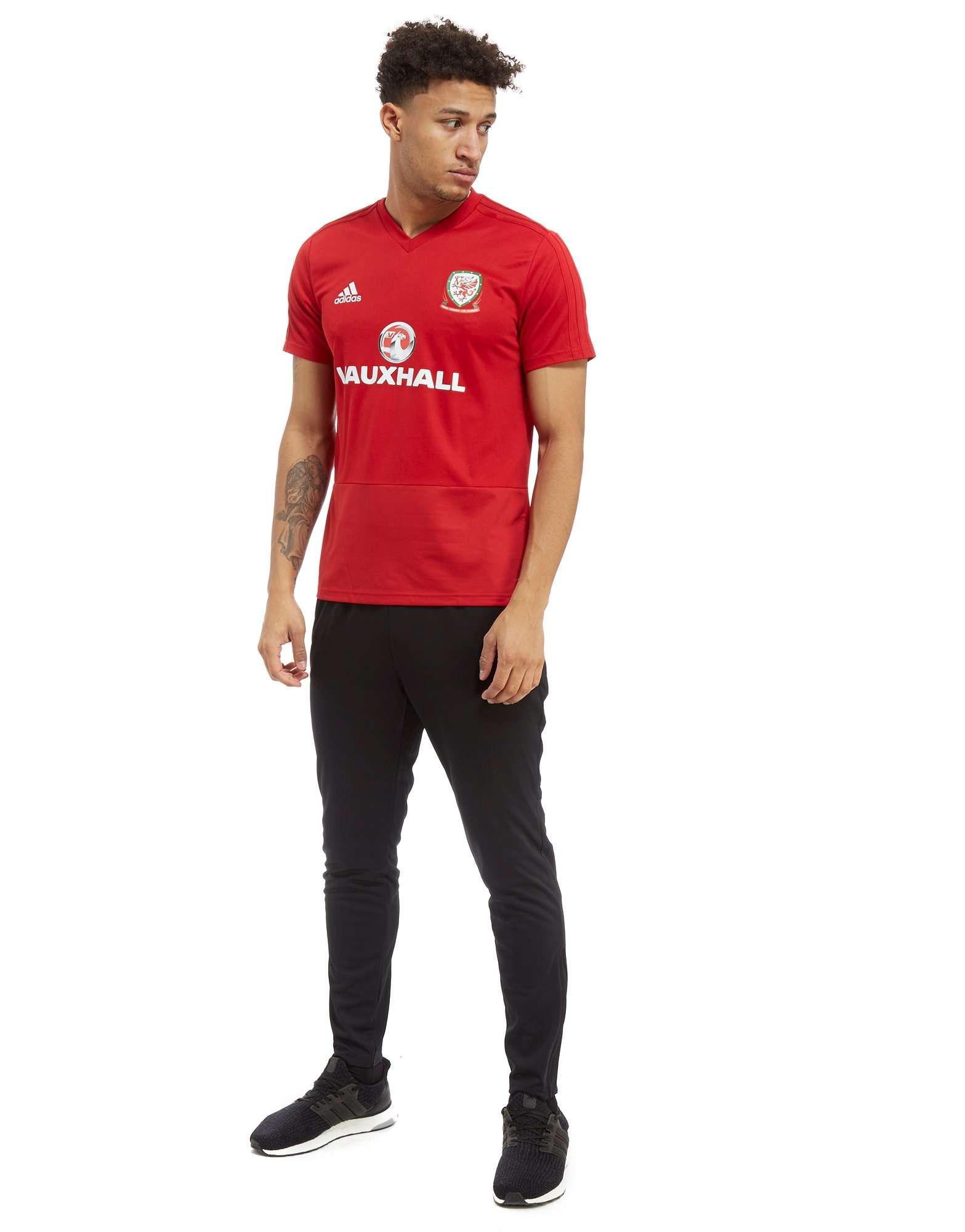 adidas FA Wales 2018/19 Training Shirt
