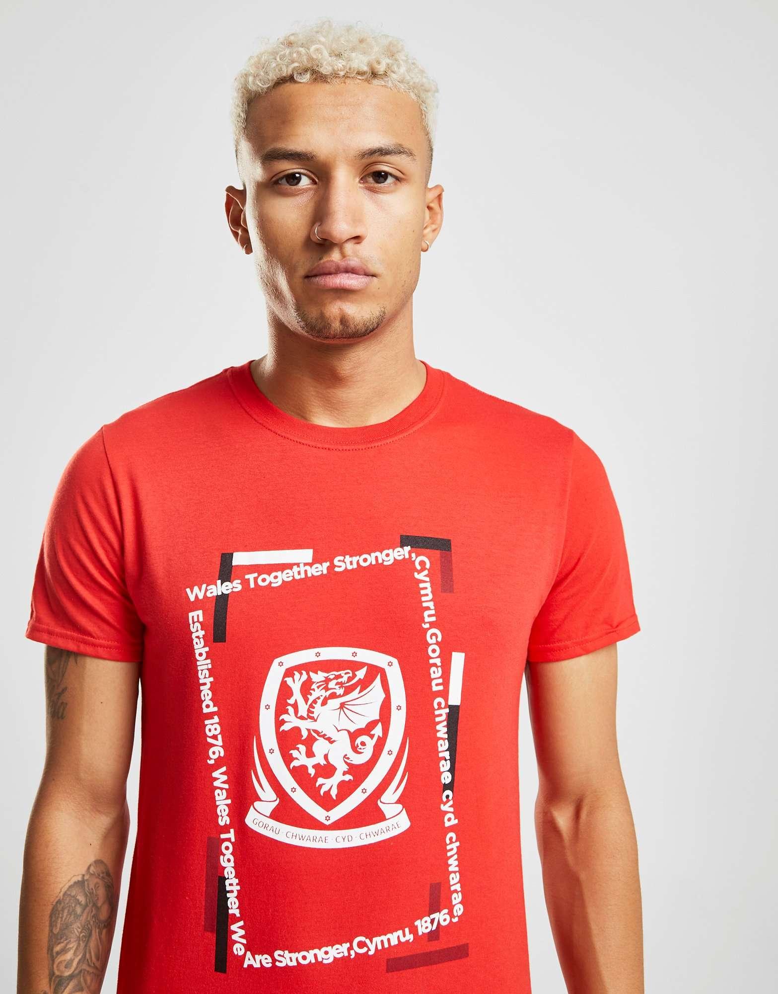 Official Team Wales Offset Short Sleeve T-Shirt