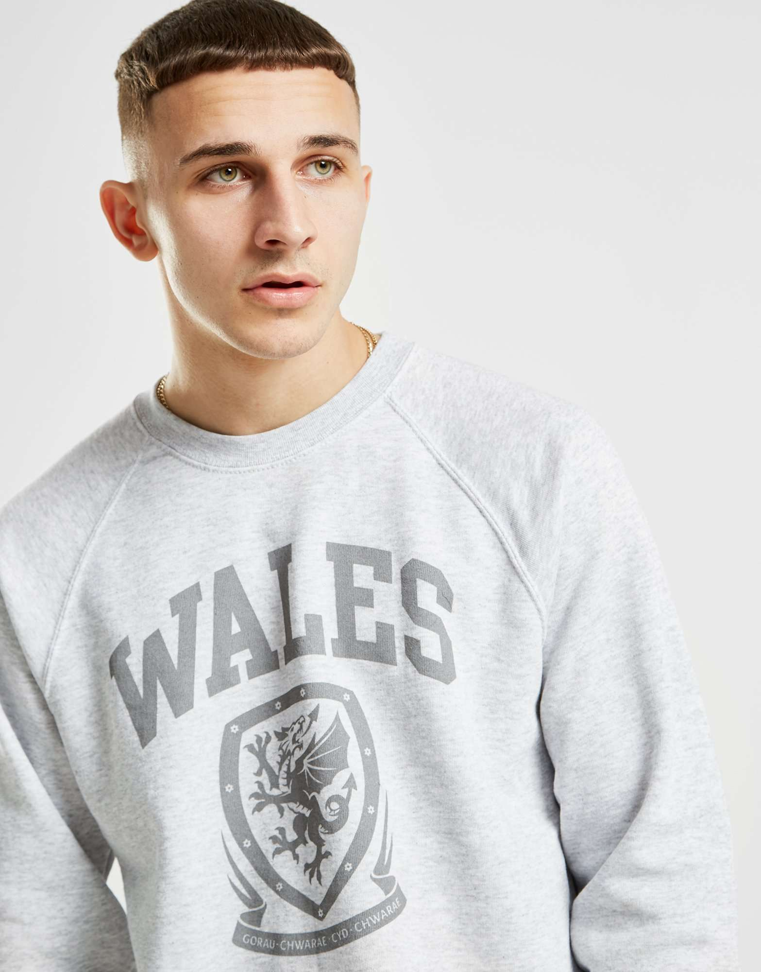 Official Team Wales Crew Sweatshirt