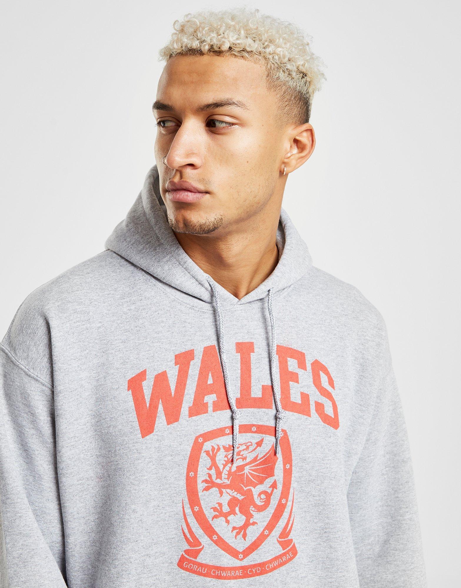 Source Lab Wales FA Hoodie