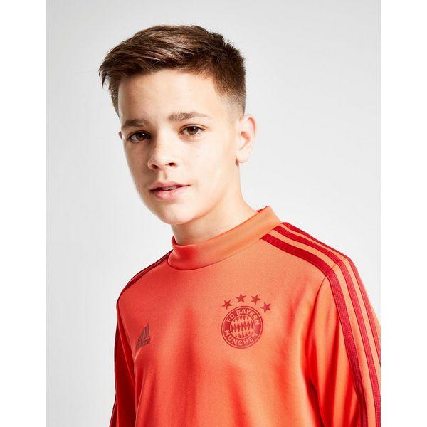 adidas FC Bayern Munich Training Top Herren