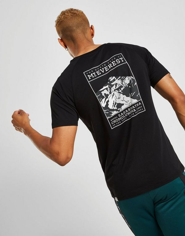The North Face Mount Everest T-Shirt Heren