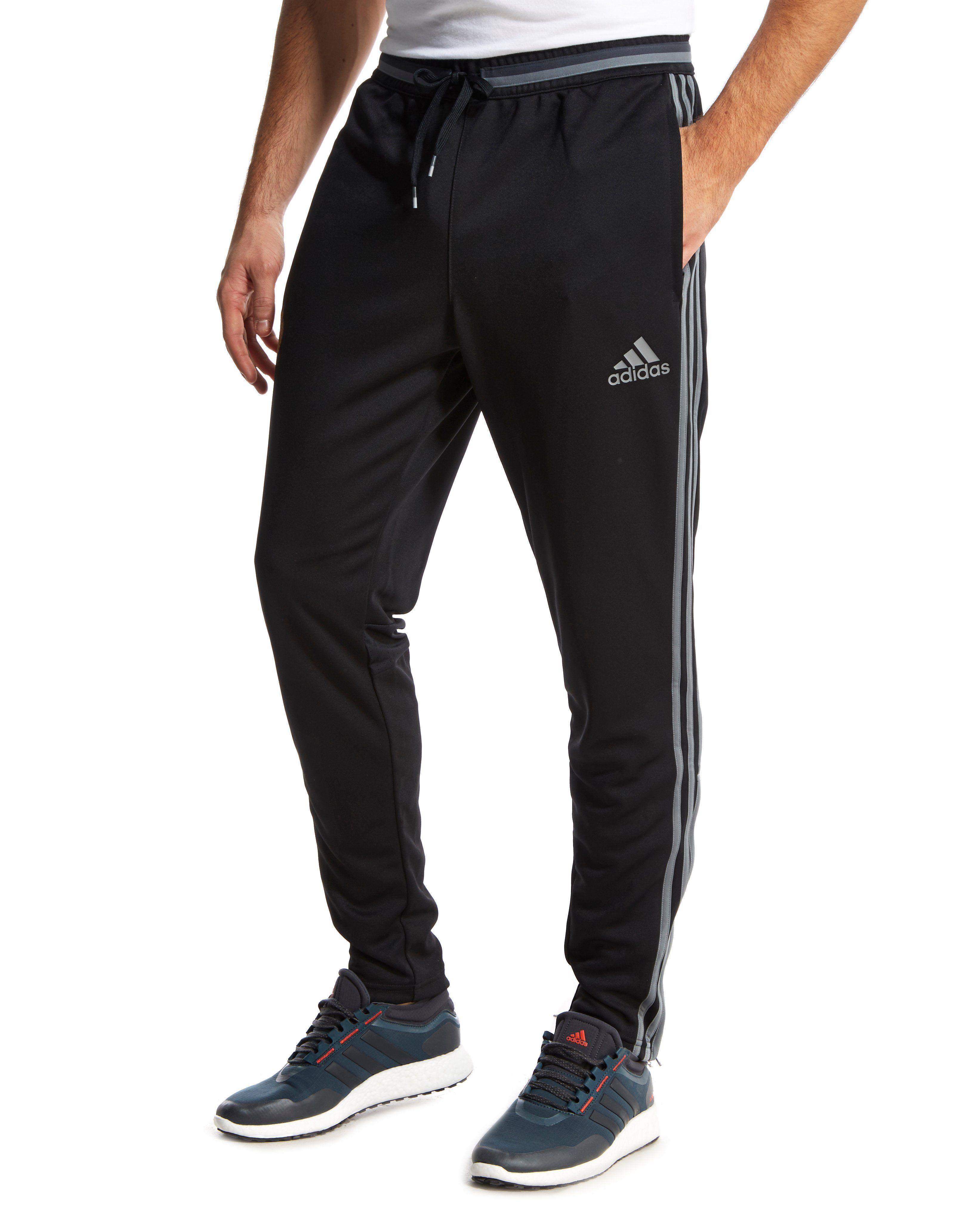 adidas belgium training pants jd sports. Black Bedroom Furniture Sets. Home Design Ideas