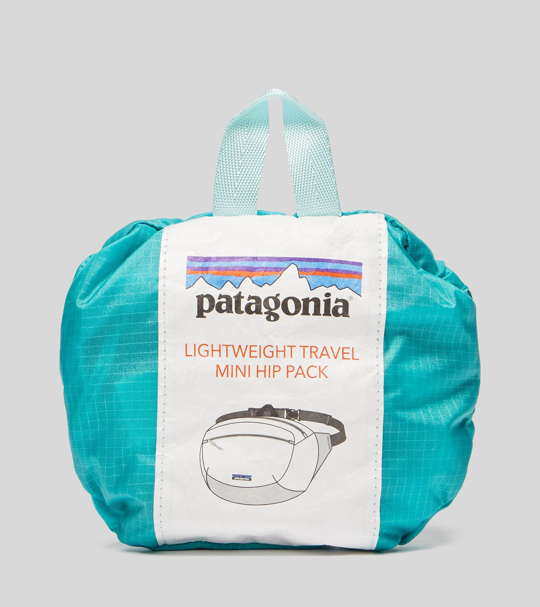 Patagonia P-6 Mini Waist Pack