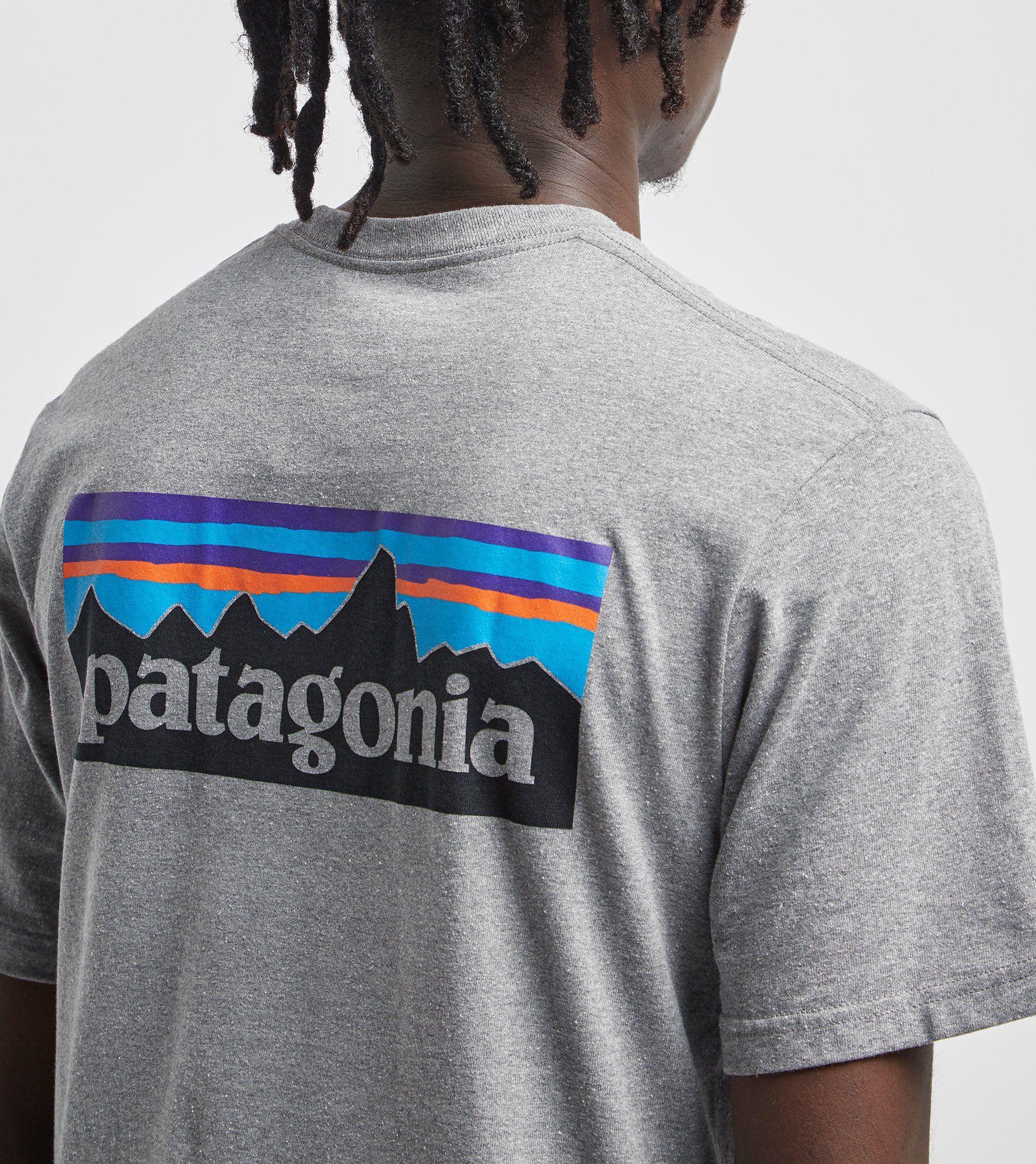 Patagonia P-6 Logo Responsibili T-Shirt